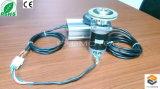 12 V DC sin escobillas del motor de la máquina de moda y calzado (FXD57BL-36180-001)
