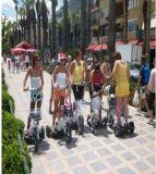 """Do """"trotinette"""" à moda da patrulha de Smartek triciclo elétrico esperto Escooter do cruzador do """"trotinette"""" de Trike da motocicleta de três rodas Dreirad para os esportes ao ar livre Jx006A"""