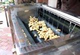 자동적인 당근 카사바 타로토란 과바 감자 껍질을 벗김 세탁기