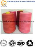 De buena calidad del desgaste - hilo de coser 100% del poliester de la materia textil resistente del bordado 75D/2