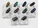 Nail Art, de manucure beauté, des ongles Accessoires, clou de la poudre de paillettes