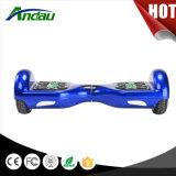 6.5 Inch Two Wheel E-Vespa Company