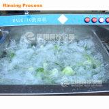 Lavatrice della bolla di Vegetale e della frutta, rondella della verdura dell'ozono di Multifuction