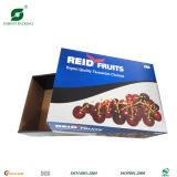 Impresión de encargo de la fruta caja de papel de embalaje