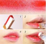 Soem, das doppelte Farben-stufenweisen Änderungs-Quadrat-Lippenstift befeuchtet