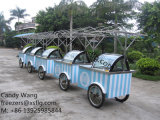 Palillo y carros del helado/congeladores italianos del escaparate de Gelato