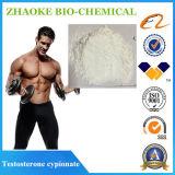 Testosteron Cypionate für Auslese-Eignung-Steroid Androgen-Puder