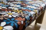 Base di sofà convertibile del Futon di immagine favolosa