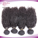 Mongolisches verworrenes lockiges Haar-volles Häutchen-natürliches Menschenhaar