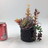 Искусственний Succulent цветет бонзаи украшения