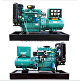 генератор электричества двигателя 50kw Weifang Рикардо тепловозный с ATS