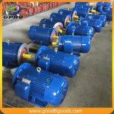 Motor eléctrico trifásico 40HP de la inducción trifásica de Y