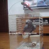 정연한 개 소파 베드 아크릴 애완 동물 침대 Btr S1028