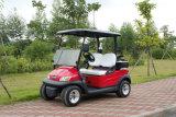 Auto 2 van de Club van de Chassis van het aluminium de Elektrische Auto van het Golf Seater