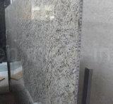 黒いMarquinaの大理石の自然な石造りの蜜蜂の巣のパネル