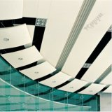 Gutes Preis-Aluminium kundenspezifische künstlerische Decke