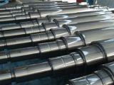 Rullo resistente dell'asta cilindrica dell'acciaio legato
