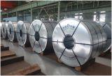 Feuille 304 304L 316 316L d'acier inoxydable