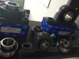 Uc205 Bearing UK205 Uc208 Insert Bearing Without Block