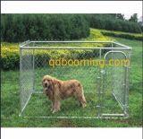 Canis de aço do cão da ligação Chain