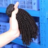 Комплект 3/4 сделки очаровательные волосы вьются торговцев Dropshipping 100 выходцев из Индии Kinky вьющихся волос человека
