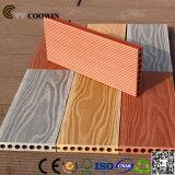 3D neuf gravant le plancher bon marché creux de Decking de WPC