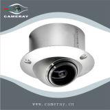 FlugwesenSaucer Fisch-Auge UFO-Kamera