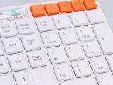 Мышь и клавиатура компьтер-книжки Multi-Language плана ключей мультимедиа тонкая беспроволочная
