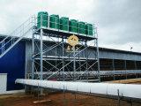 Estructura de acero prefabricados automático de la granja avícola la construcción de Galpón pollo broiler Galpones comercial