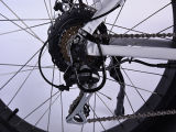 26 Zoll-elektrisches fettes Fahrrad mit Lithium-Batterie