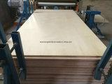Contre-plaqué commercial/contre-plaqué courant en bois de pin de contre-plaqué de faisceau de contre-plaqué/bouleau Produts/Okoume F/B