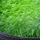Anti-UV barata alfombra de césped artificial para campos de fútbol