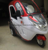 3 Passagier-elektrisches Auto mit der 150km Reichweite