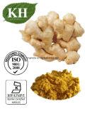 6/8/10 Gingerols 98% van het Uittreksel van de Gember