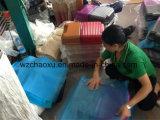 Bagagli di plastica della cassa del vestito che formano macchina