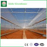 Дешевые один Span пленки сельского хозяйства выбросов парниковых газов для выращивания овощей и сад