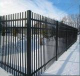 rete fissa di picchetto del ferro di 5ftx8FT Wrougnt/recinzione usata/rete fissa del ferro saldato