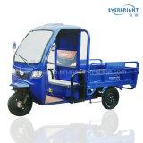 高品質3台の車輪の食糧配達モーター電気貨物三輪車