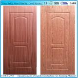 Madera oscura y chapa de Fresno EV ante la puerta de madera contrachapada de moldeado de la piel