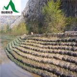 댐 또는 축대 /Slope로를 사용하는 Geobag 보호 프로젝트