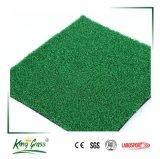 良質の小型ゴルフパット用グリーンの人工的な草