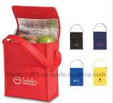 Printed di derivazione Non Woven Thermo Bag per Frozen Bag, Nonwoven Thermo Bag Wholesale (M.Y C-005)
