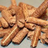 Pallina di legno dura della segatura di Fule della nuova biomassa all'ingrosso che fa pianta