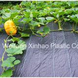 Jardin de tissu tissé en polypropylène couvercle pour l'aménagement paysager