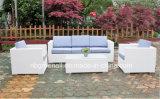 Meubles extérieurs réglés de rotin de sofa de rotin de PE (9059S)