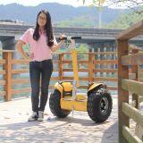 2 Autoped van de Blokkenwagen van het Saldo van het wiel de Elektrische met 2400W