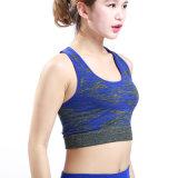 Йога установленное Yjf10301022 повелительниц пригодности Sportswear дешевых женщин OEM установленная