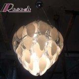 Qualitäts-Wohnzimmer-Glasscheibe Fluorescen hängende Lampe