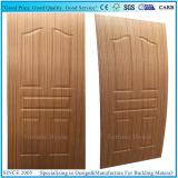 EV-Sapelli 또는 티크 목제 베니어 합판 문 피부