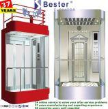 別荘のための修飾された観察の乗客のホームエレベーター